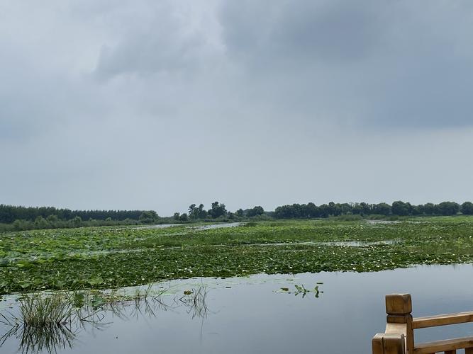 微山湖旅游区国家湿地公园