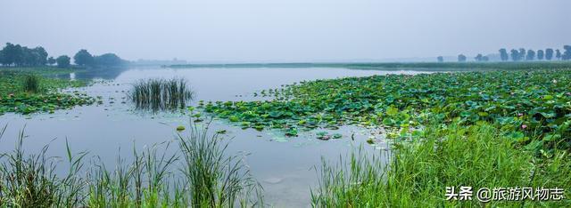 盘点山东4大天然湖泊微山湖面积最大你去过几处