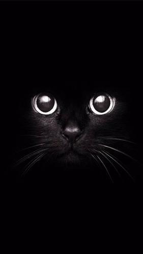 黑色质感壁纸,简约漂亮