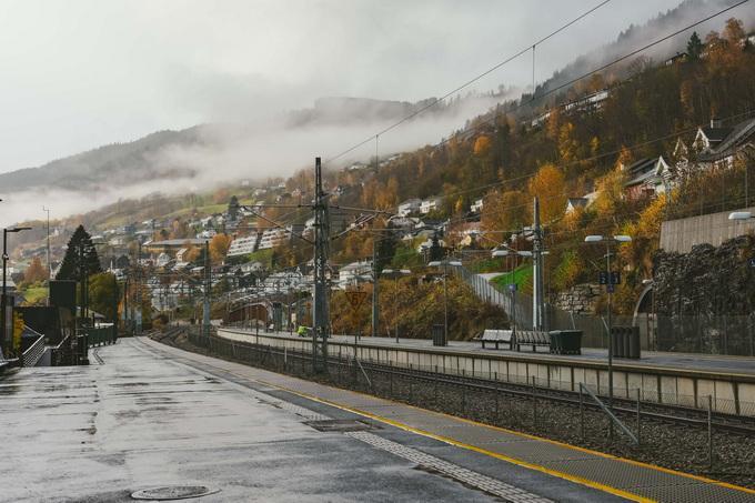 挪威突发一男子用弓箭射杀多人5死2伤