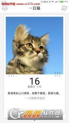 一日猫app安卓版