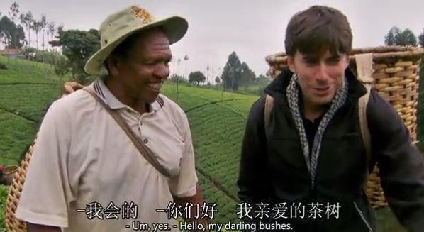从这里开始,西蒙沿着茶叶之路,在肯尼亚和乌干达寻访采茶,打包和运输